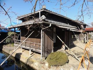 Sawara05