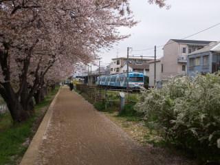 Sakagawa200604